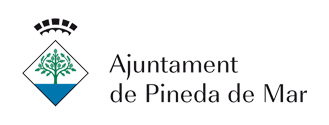 ajuntament pineda mar industry services